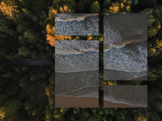 multi-frame drone shot of beach and forest